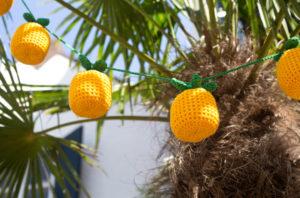 Aan de Haak - Ananasslinger